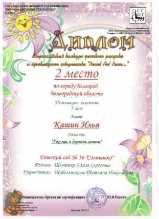 p20_2mestokashin
